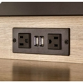 Power Module - 2 Power and 2 USB Outlets 1 Daisy chain