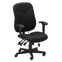 Executive Posture Chair