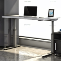 "RGE 48""W x 24""D  Electric Height Adjustable Table"